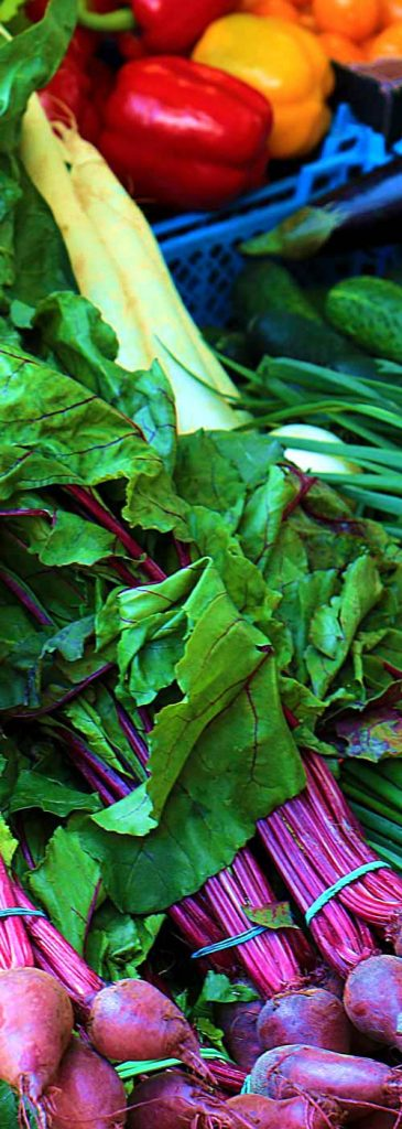 Fat carrot green vegetables